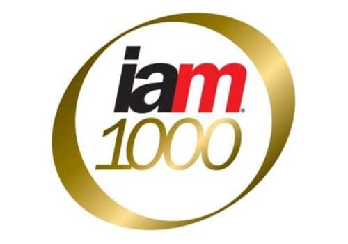 IAM-Patent-1000-2017